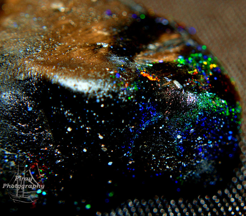 black_opal_by_piray_vamp